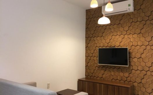Serviced apartment for rent in district 1, HCMC - Living room 146
