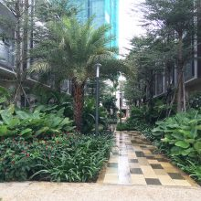 house-compound-for-rent-palm-residence-palm-city-district-2-hcmc-0015 20181128145917