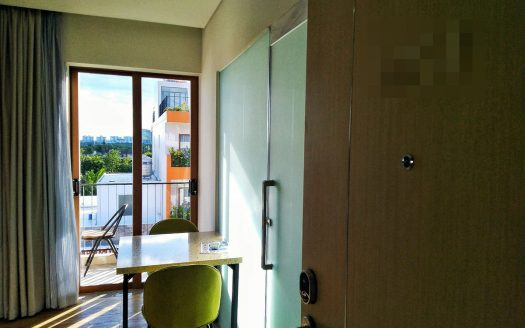 serviced apartment rent district 2 hcmc 10117714