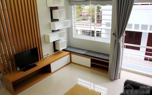 serviced apartment rent district 1 hcmc 1031809
