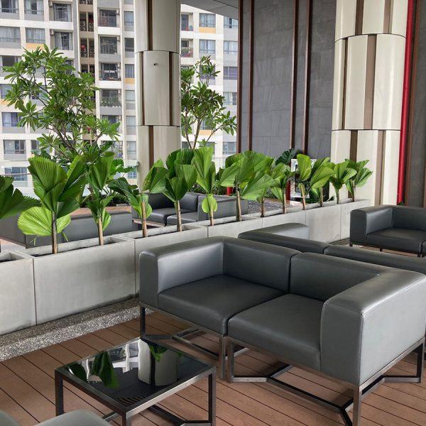 q2 apartment rent thao dien hcmc00006