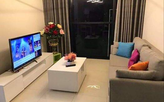 apartment rent the ascent thao dien district 2 hcmc 1050994