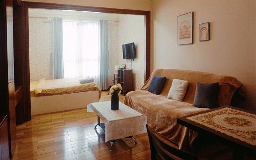 apartment rent the manor binh thanh district hcmc 1046592